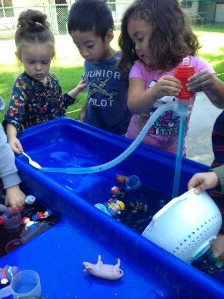 Preschool STEM (11)
