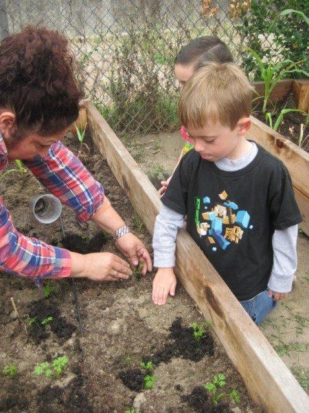 preschool garden (4)