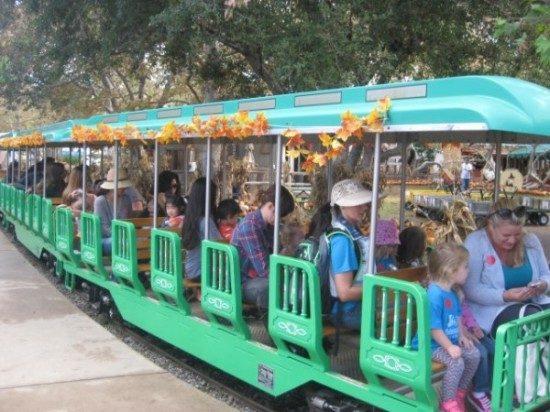 long beach Edgewater preschool fiield trip (6)
