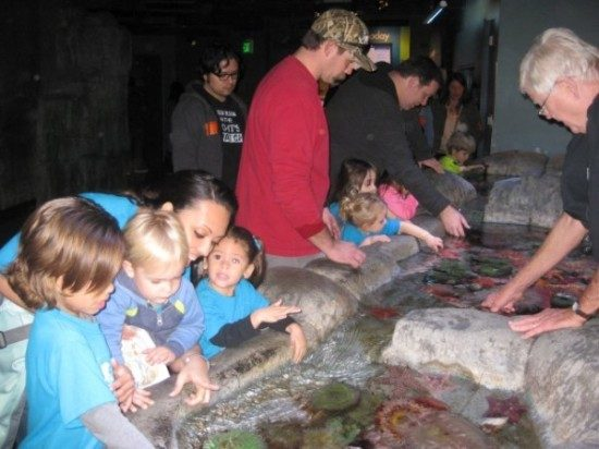 Long Beach Aqarium Field Trip (5)