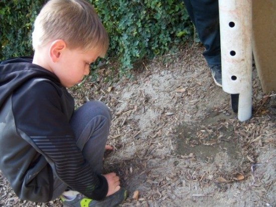 long beach preschool outdoor play (8)