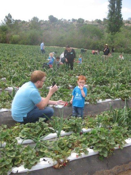 preschool field trip (7)