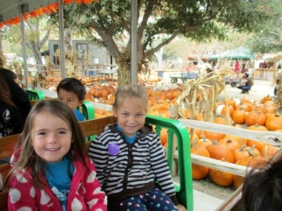 edgewater-preschool-pumpkin-patch-field-trip-1
