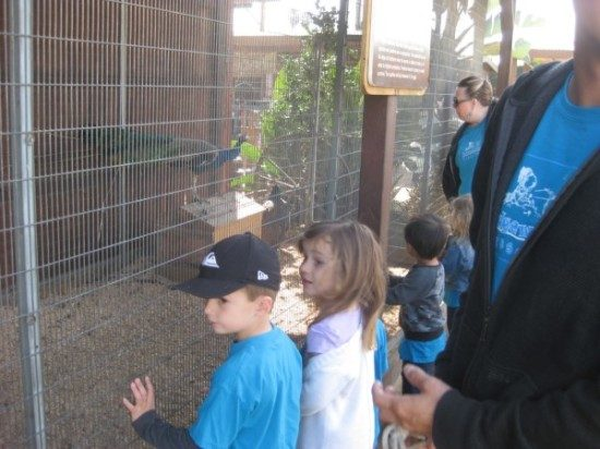 preschool field trip to farm-long beach (5)