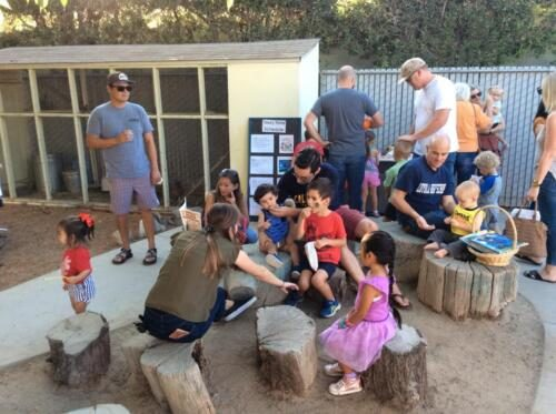 Edgewater Preschool Events and Trips (2)