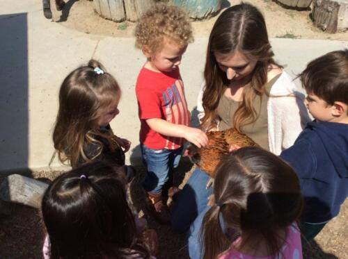 Edgewater Preschool Outdoor (10)