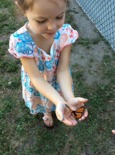 Edgewater Preschool Outdoor (14)