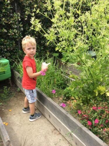 Edgewater Preschool Outdoor (20)