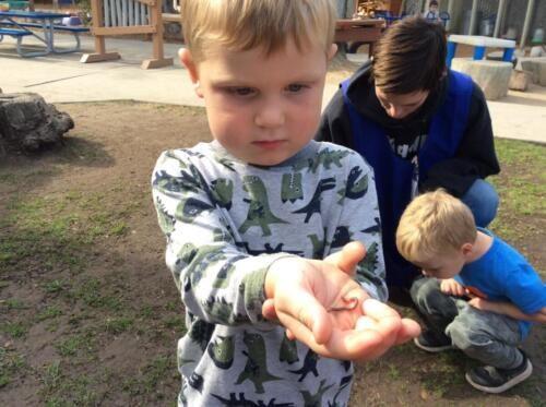 Edgewater Preschool Outdoor (3)