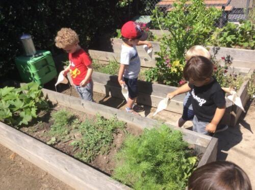 Edgewater Preschool Outdoor (9)