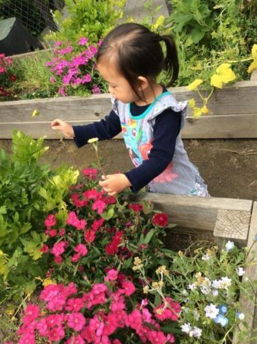 Edgewater Preschool Philosophy (5)